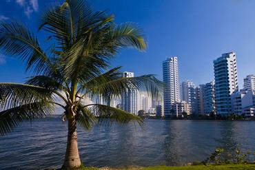 Alfa Inmobiliaria inicia su actividad en Colombia